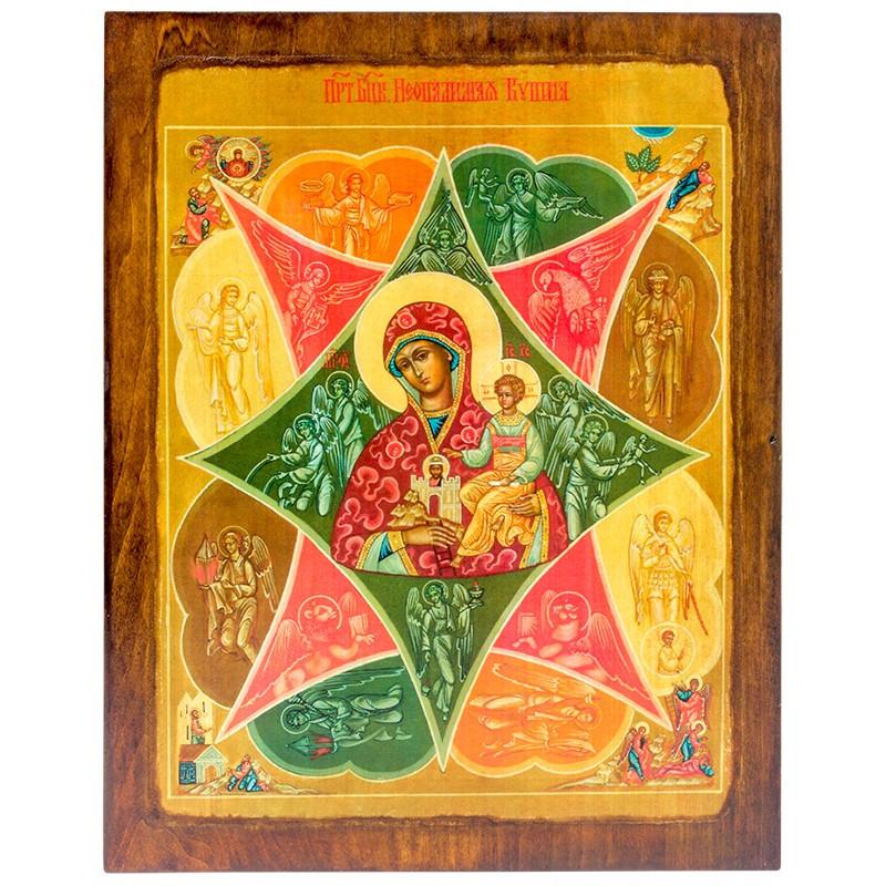 Икона Божья Матерь Неопалимая Купина (17331)