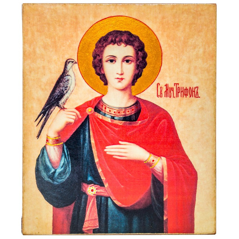 Икона Святой мученик Трифон 11х13 см
